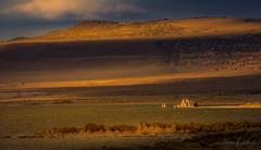 Be Still and Listen... (Selkii's Photos) Tags: california dusk evening leevining monolake sunset unitedstates us