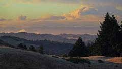 Carr Fire Smoke Plume at Sunset (fksr) Tags: smokeplume wildfire smoke carrfire redding california mounttamalpais hills trees landscape distantsmoke sky