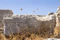 Lindos Akropolis ancient Greek and plants 2 (ir0ny) Tags: rhodes greece lindos acropolis akropolis lindosacropolis lindosakropolis greek ancient ancientgreek temple greektemple ruins ancientruins lindian plants