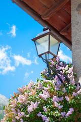 Lampione Fiorito (ValeriaC93) Tags: lampione fiori cielo tetto sky flowers roof cogne aosta