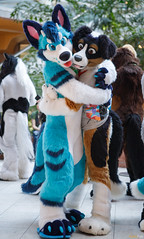FOX_3370 (Kyoto Fox) Tags: noodles nfc nfc2018 nordicfuzzcon nordic fuzz con sweden furry fursuit fursuits upplandsväsby stockholmslän se