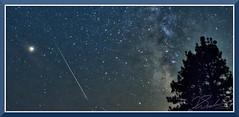 MarsFireBallMilkyWayTree_0327 (bjarne.winkler) Tags: at loon lake from left right is mars perseid meteor milkyway tree