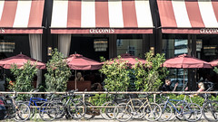 Cecconi's (lucico) Tags: 2018 berlin restaurant city street capital eu germany bicycle deutschland awning people europa umbrella mitte
