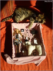 TAG GAME - dolls with real pets (Mary (Mária)) Tags: barbie doll toys cat cats photoshoot photography indoor scene summer animal relax diorama turban chanel playset dollphotography dollcollector daria barbiebasic holiday sea sun shoot fun love handmade marykorcek