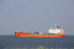 CHEM ALTAMIRA (angelo vlassenrood) Tags: ship vessel nederland netherlands photo shoot shot photoshot picture westerschelde boot schip canon angelo walsoorden chemaltamira tanker