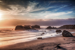 Insistant beauty of the rocky shore (Barb Henry) Tags: bandon oregon beach ocean birds coastal southernoregon sand sunset beautiful