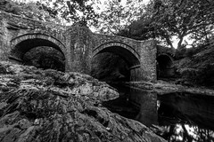IMG_6958 (Marklucylockett) Tags: holnebridge devon marklucylockett 2018 dartmoor dartmoornationalpark riverdart canon7d bridge blackandwhite