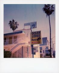 Ocean Lodge Hotel 1 (tobysx70) Tags: polaroid originals color 600 instant film slr680 ocean lodge hotel avenue santa monica california ca sign blue sky palm tree venice polarendezvous 051518 toby hancock photography
