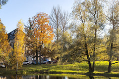 Feodorovsky small town. Autumn. (fedoseenko) Tags: санктпетербург россия красота colour природа nature beauty blissful loveliness beautiful saintpetersburg sunny art shine dazzling light russia day green park peace tree trees garden blue white голубой небо лазурный color sky pretty sun пейзаж landscape lake clouds river water waves view heaven mood serene golden reflection вода река grass field wood autumn gold feodorovsky пейжаз федоровский colours alley town outdoors picture отражение облака архитектура озеро walkway architecture building