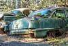 New Yorker (garshna) Tags: ruins rusty moss fungus cadillac newyorker abandoned ruined cars junk