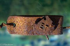 Rusty alien (steveflockton1) Tags: rust metal fence alien extra terrestrial explore art spiders web