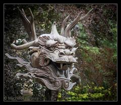 Ai Weiwei - Dragon (MikeJDavis) Tags: aiweiwei ysp yorkshiresculpturepark