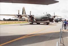 6804 Lockheed C-130H Hercules Portuguese Air Force (graham19492000) Tags: 6804 lockheed c130h hercules portugueseairforce