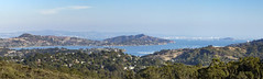 California Cannabis Countdown: Marin County Update (jodieshazel) Tags: sanfrancisco sf sanfran landscape bay panoramic panorama ocean islands nature marin county hills fog foggy haze outdoors travel tourism tourist view overlook scene forest trees water houses homes boats life lifestyle beautiful american america california city bridges buildings blue sky