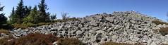 Le sommet du Crêt de la Perdrix (Pierre_H) Tags: crêt perdrix pilat bessat vallaengier saintetienne chirat leyptinite gneiss jasserie massif central loire érosion périglaciaire