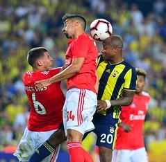 Fenerbahçe Şampiyonlar Ligi'ne veda etti (haberihbarhatti) Tags: alperpotuk aydın barışalıcı benfica ceza fenerbahçe giuliano hasanalikaldırım mehmetekici mehmettopal şampiyonlarligi stat uefa uefaşampiyonlarligi