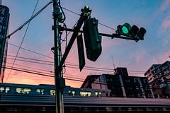 Meguro before sunset (uaru.amphiacantoides) Tags: sunset tokyo japan city cityscape train
