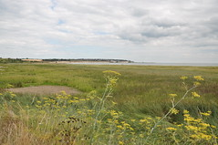 Pegwell Bay 1661 (Kent Country Parks) Tags: summer autumn spring pegwellbay country countryside kentcountryparks kent