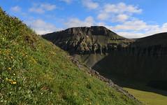 Búrfell (hó) Tags: búrfell neðrabæjarnúpur vatnahvilft selárdalur arnarfjörður iceland july 2018 landscape mountain clouds slope green flowers vestfirðir westfjords