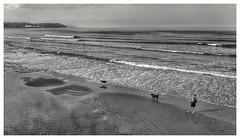Scarborough, North Bay. (Develew) Tags: northbay scarborough england northyorkshire sand sea dogs training ballgames balls waves headland promenade