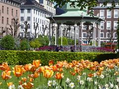 Music Pavilion (m_artijn) Tags: music pavilion bergen norway tulips green park downtown building flower