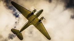 Workhorse (PhotoGizmo) Tags: douglas dc3 dc3c vanderhoofairshow vanairshow 2018 aircraft wings gear landing propellor engine elevator aileron cloud sky flight flying bc britishcolumbia canada n877mg