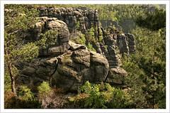 Felsenwelten (https://www.norbert-kaiser-foto.de/) Tags: sachsen saxony sächsischeschweiz saxonswitzerland elbsandsteingebirge elbesandstonemountains sandstein sandstone felsen natur nature landschaft landscape schneebergerloch wald bäume