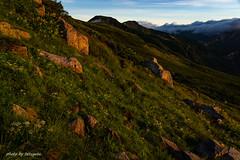 DSC05609 (tetugeta) Tags: mountain nature landscape nippon japan