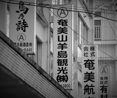 Island of Amami-ōshima 奄美大島, Japan (Masakino Fuquini) Tags: amami japan japanese island 名瀬 奄美 奄美大島 nikonflickraward kagoshima