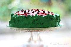 refreshing...🍰❤️ (ggcphoto) Tags: watermelon cake refreshing freshness red green food sweet tasty birthday messy