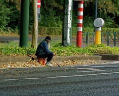 La pauvreté a de la patience - Poverty has patience (p.franche malade - sick) Tags: pauvreté homme vieux barbu mendiant streetshot instantané urbain humain assis roumain canne poverty man old bearded beggar instant urban human roman cane sitting sony sonyalpha65 dxo photolab bruxelles brussel brussels belgium belgique belgïe europe pfranche pascalfranche schaerbeek schaarbeek