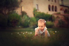 Summertime ({jessica drossin}) Tags: jessicadrossin portrait dandelion spain catalonia baby wwwjessicadrossincom child crawling discovery
