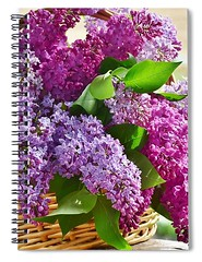 1-lilac-carlene-smith (Fine Arts Designer) Tags: notebook notebooks writing write stationaery paper spiral