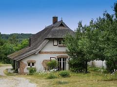 Fischerhaus (ingrid eulenfan) Tags: moritzdorf inselrügen mecklenburgvorpommern haus reeddach fischerhaus blumen wiese dorfaltensien