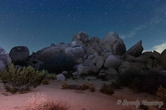 029-Hidden_Valley-002 (Beverly Houwing) Tags: joshuatreenationalpark outdoors recreation nature yuccavalley 29palms shadow boulders hiddenvalley night sky stars lightpainting landscape rockformation colorful joshuatree california usa