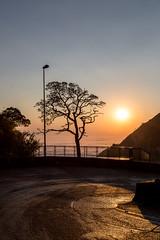 rio do rastro-11 (CARLOS_HP) Tags: amanhecer arvore estrada serradoriodorastro alvorada bomjardimdaserra cinturãodevenus contraluz mardenuvens nuvens santacatarina silhueta sobreasnuvens solnascendo