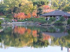 a (60) (hiromi89) Tags: japan beauty beautiful scenery flower wood pond
