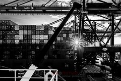 Port Star (blende9komma6) Tags: nikon d7100 bw sw rotterdam port hafen niederland harbor marina netherlands sun star sunset sonne container kran crane cosco shipping ship vessel euromax sonnenuntergang