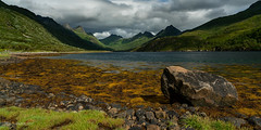 Olderfjorden (Norway) (christian.rey) Tags: nordland norvège no austvägoya island olderfjorden norway paysage landscape fjord mountains montagne kleppstad sony alpha a7r2 a7rii 24105 rocks rochers algues