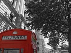 London Telephone Booth Parliament Square (albeaver) Tags: london united kingdom parliament