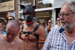 DSC02507 (thomasderzweifler) Tags: csd hamburg pride christopher street day 2018 gay queer transgender lsgbti lsgbt homosexual schwul genderwahn google bimmelbahn hansestadt hh ordner engel parade
