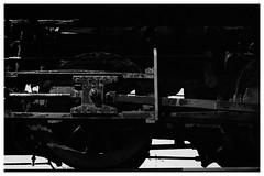 Driving Wheel (Helios 1984) Tags: agfarondinax rondinax35u ilfordrapidfixer daylightloadingfilmdevelopingtank expiredfilm konicaminoltadimageiv dimageivscanner minoltascanner dimageiv topcon35l beselerl topcor44cmf2 rangefindercamera topcon tokyokogaku トプコン35l トプコン レンジファインダーカメラ フィルム ヴィンテージカメラ agfafilm agfasuperpan24 agfa superpan 200vintage film locomotive steamlocomotive steamtrain steamtankengine railway railroad