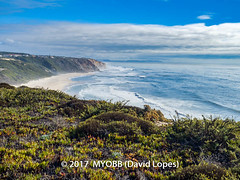 Portugal 2017-9041888 (myobb (David Lopes)) Tags: 2017 allrightsreserved atlanticocean europe nazare portugal absence beach clifft copyrighted incidentalpeople mist nature ocean outdoor plant scenicnature seascape sky tourism touristattraction tranquilscene tranquilty traveldestination vacation water watersedge waves ©2017davidlopes