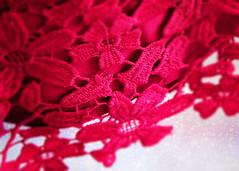 Mesh (Jenny Onsager) Tags: macromondays mesh red lace redflowers bokeh
