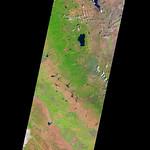 Nevada and California and Wildfires, variant thumbnail