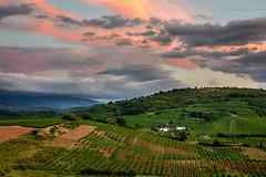 DSC_03589F (Javier_1972) Tags: bierzo españa viñas nubes cielo puestadesol verano tarde sol