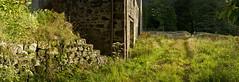 Queen Anne's Lace (CALandscapeArt natura artis magistra) Tags: scotland uk stable ruin stone panorama kilmelford estate summer green