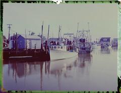 Dutch Girl (thereisnocat) Tags: polaroid polaroid195 fp100c negative reclaimed harbor boats belford middletown monmouthcounty newjersey nj