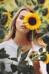 Keep your face to the sunshine (David Olkarny Photography) Tags: davidolkarny olkarny david flower sunflower bruxelles photographe photographer shooting belgique belgium