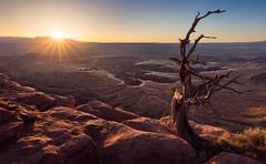 Canyonlands Sunrise (kspixels) Tags: canyonlandsnationalpark utah grandviewpointtrail